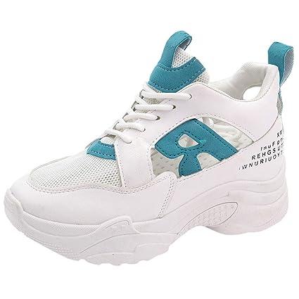 11b5dd3fb91f Amazon.com: JJHAEVDY Women's Retro Mesh Platform Chunky Sneakers ...