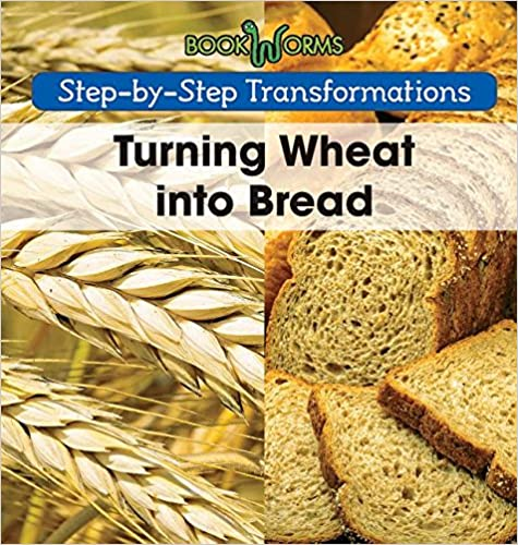 Turning Wheat Into Bread (Step-By-Step Transformations)