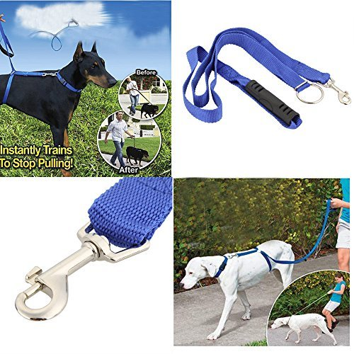 The Instant Trainer Leash for Dogs 6ft - 3