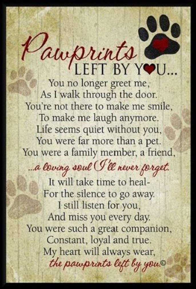 Pawprints Left By You Pet Memorial Plaque - Remembrance Offering For Grieving Pet Owner