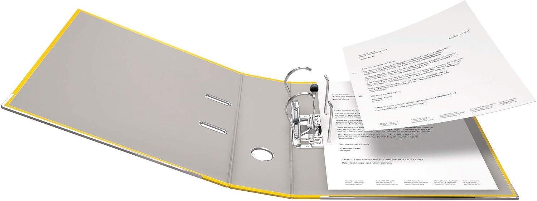 Prodotto originale Falken DIN A4 10er Pack breit colori assortiti