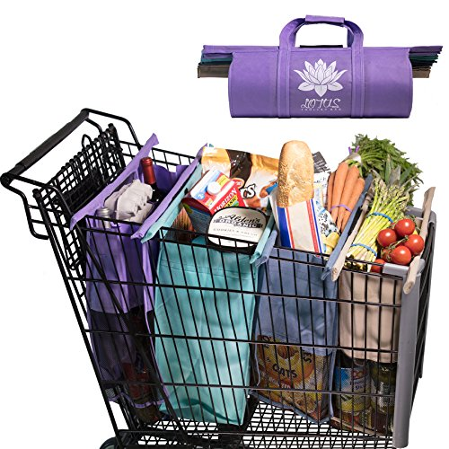 Grocery Bags Holder - 2