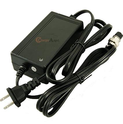 Amazon.com: Scooter eléctrico 24 V Cargador de batería para ...