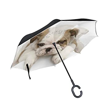 BENNIGIRY Bulldog Face Pug Inside out - Paraguas Plegable, Doble Capa, Grande, para