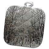 3dRose TDSwhite – Winter Seasonal Nature Photos - Woods Scenic Winter Photo - 8x8 Potholder (phl_285066_1)