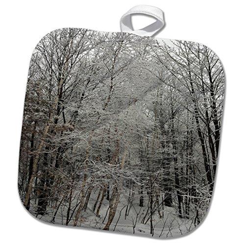 3dRose TDSwhite – Winter Seasonal Nature Photos - Woods Scenic Winter Photo - 8x8 Potholder (phl_285066_1) by 3dRose (Image #2)