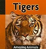 Tigers, Galadriel Findlay Watson, 1590369629