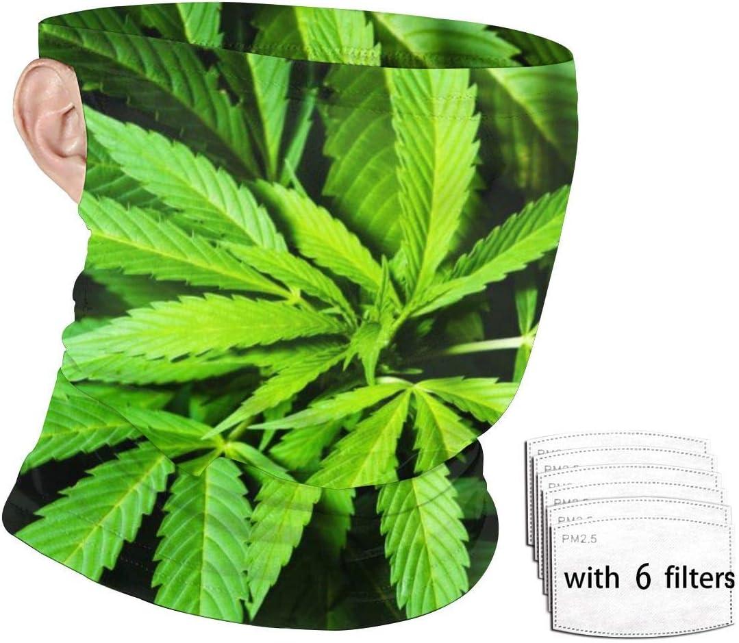 ENZOOIHUI Cannabis Marihuana Leaf Seamless Face Bufanda Bucles de Oreja con 6 filtros, Polaina Anti-Polvo Cuello Diadema A Prueba de Viento Headwear Pasamontañas