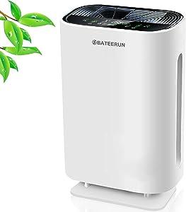 True HEPA Filter Air Purifiers for Home, Quiet Air Cleaner for Pets, Smokers, Dust, Pollen. True HEPA Air Purifiers Filter for Bedroom, Large Room with Night Light BATEERUN