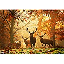 Cinhent Diamond Painting, 5D DIY Embroidery Cross Stitch Craft, Autumn Leaves and Elk, 30 x 40 cm, Home/Bar/Bedroom/Hotel Wall Decor Adult Gifts, Elegant Noble Quality Life