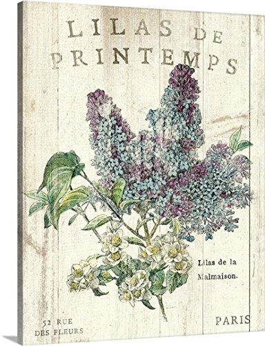Sue Schlabach Premium Thick-Wrap Canvas Wall Art Print entitled Lilas de Printemps