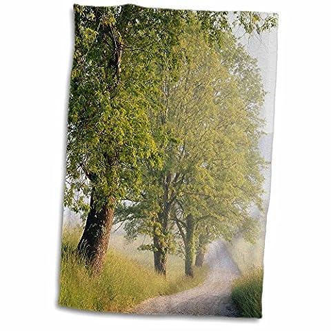 3D Rose USA Tennessee Great Smokey Mountains NP Cades Cove Hyatt Lane. twl_189347_1 Towel, 15