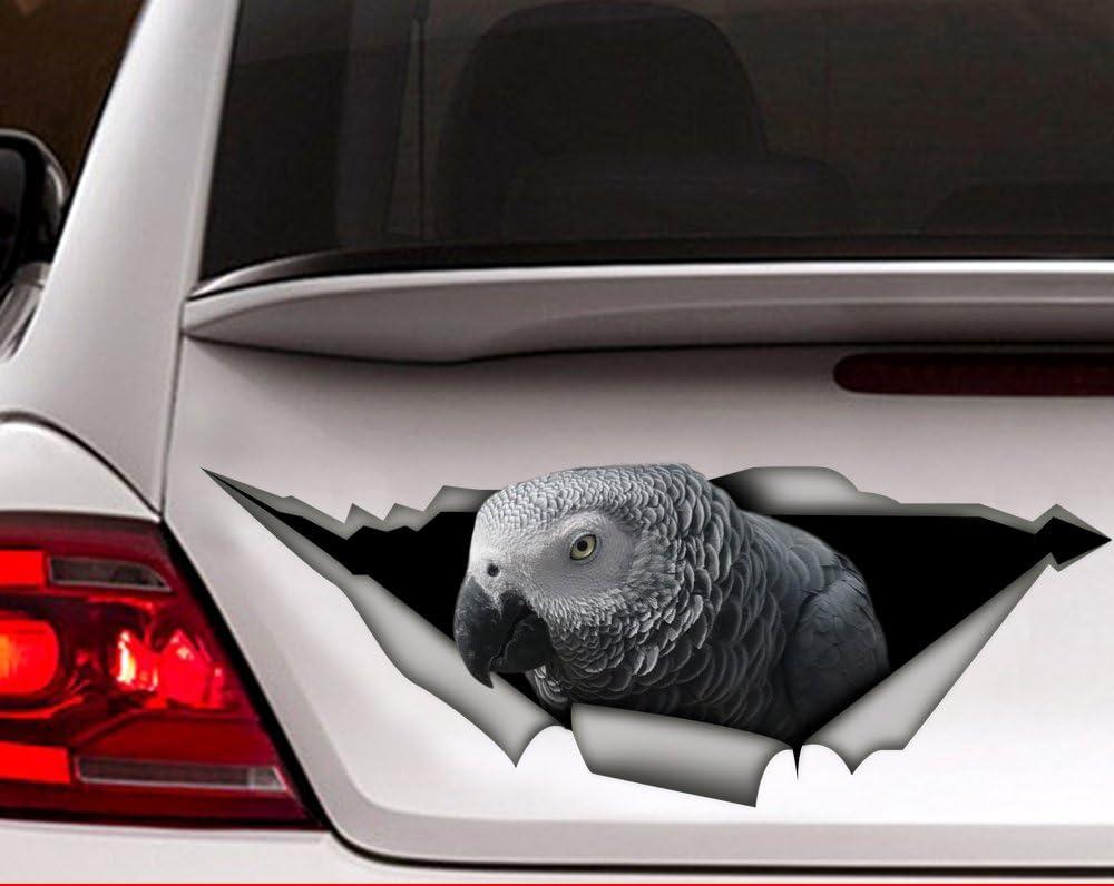 African Grey Parrot BIRD STICKER Window Car Decal Cartoon