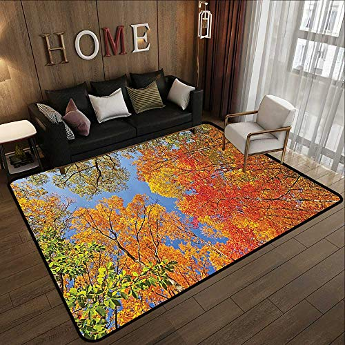 Camping Rugs for Outside,Leaves Decor,Falls Colors in National Country Park Nature Observation Base Perspective Photo,Orange Blue Green 59