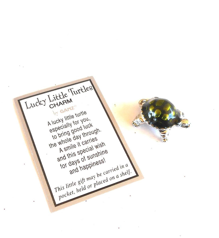 Amazon lucky little turtle pocket charm home kitchen biocorpaavc
