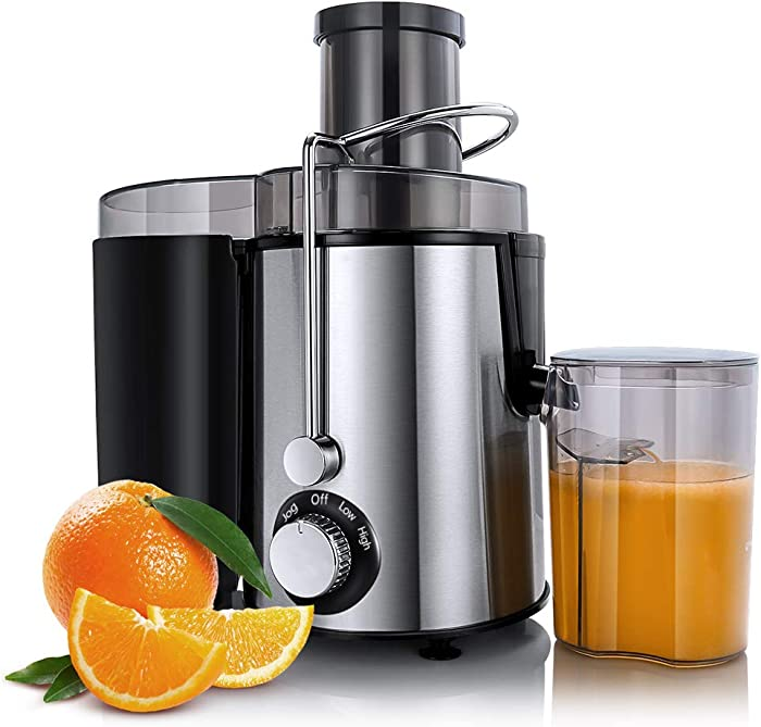 Top 10 Juicer Fsa
