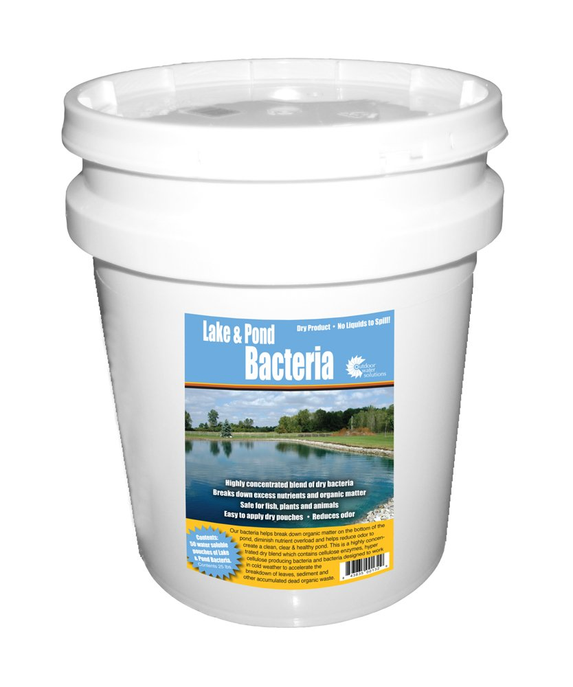 Outdoor Water Solutions PSP0132 Lake and Pond Bacteria by Outdoor Water Solutions