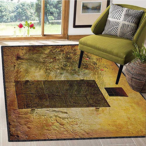 Rustic Contemporary Area Rug,Historical Artistic Italian Door of Stone House Mediterranean Picturesque Heritage Anti-Static,Water-Repellent Amber Brown 59