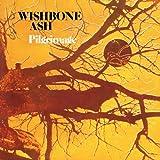 Pilgrimage by Wishbone Ash (2010-12-22)