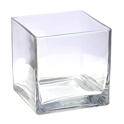 225 & Vasefill 6-Pack Clear Square Glass Vase - Cube 5 Inch 5\