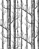 """HaokHome Modern Birch Tree Wallpaper Non Woven Forest Trunk Wall Paper Black White Murals for Kitchen Bathroom Living room Decor 20.8"""" x 393.7"""""""