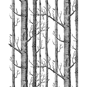 Haokhome 10011 Modern Birch Tree Wallpaper Non Woven Forest Trunk