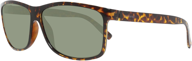 Polaroid Sonnenbrille (PLD 3010/S) Marron (Havana/Green)