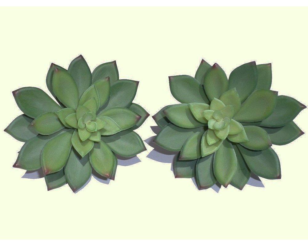 2Pcs- Fake Cactus Plants Artificial Succulents