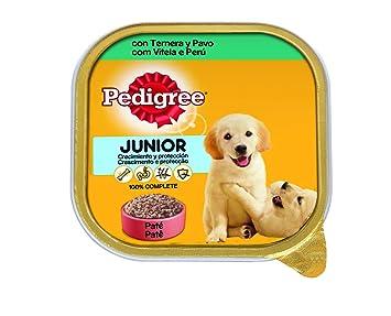 Tarrina para perros cachorros de ternera y pavo 300g | [Pack de 20]: Amazon.es: Productos para mascotas