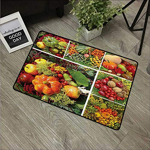 HRoomDecor Harvest,Machine Washable Small Rug Photograph of Products from Various Gardens and Fields Seasonal Foods Apple Walnuts W 31