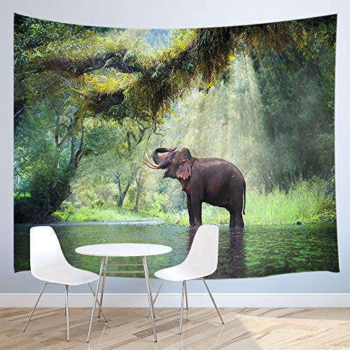 - JAWO Wild Elephant Tapestry, Elephant in Thailand Forest Wall Hanging Tapestry Wallpaper Art Fabric Tapestry Decorations Bedroom Living Room Dorm 71x60inches