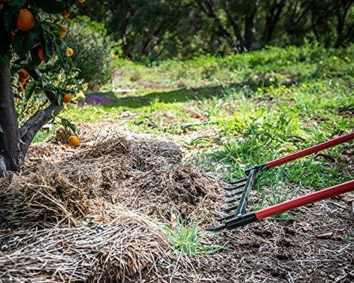 DIG IT! Garden Tools Broadfork Hand Tiller Heavy Duty Steel Construction Broad Fork (7 Tine)