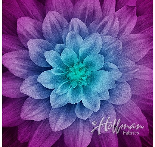 Dream Big - Digital Panel -Large Floral - Aurora - by Hoffman Fabrics
