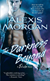 The Darkness Beyond: A Paladin Novel (Paladins of Darkness Book 8)