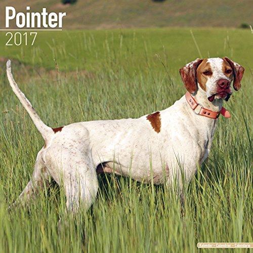 [Pointer Calendar 2017 - Dog Breed Calendar - Wall Calendar 2016-2017] (16th Century Costumes For Sale)