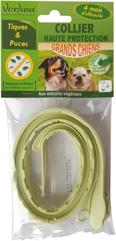 Verlina Collar de Insectos Tique/Chip para Perro Gran: Amazon.es ...