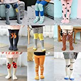 Baby Girls Tights 1 Pack 2 Pack Cotton Legging