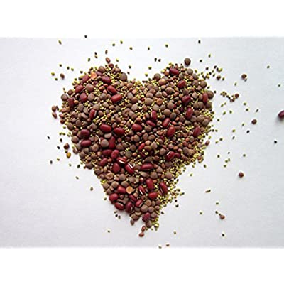 """COOL BEANS n SPROUTS"" Brand, Love your heart Mix seeds for sprouting microgreens, 2 ounces, A combination of Adzuki Beans, Red Clover, Red Radish, Red Lentils. : Garden & Outdoor"