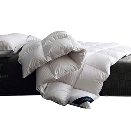 Amazon Com Globon Fusion White Goose Down Comforter King Size Warm