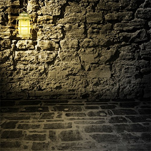 CSFOTO 8x8ft Background for Retro Lantern On Rough Stone Wall Photography Backdrop Grunge Vintage Architecture Old Building Basement Abstract Art Adult Child Photo Studio Props Vinyl Wallpaper -