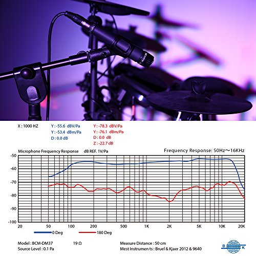 Review BC Master Cardioid Dynamic