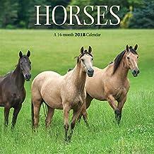 Horses 2018 7 x 7 Inch Mini Wall Calendar