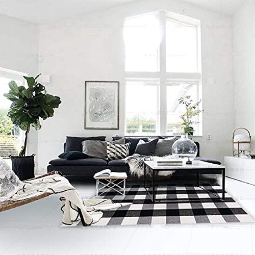 FEIAA Buffalo Plaid Rug 3X5 Black and White Rugs Indoor Outdoor Carpet Washable Modern Check Area