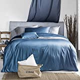 UFO Home 3pc Duvet Cover Set, 600 Thread Count Percale, 100% Egyptian Cotton, Zipper Closure, No Inside Filler or Comforter, Solid Snorkel Blue Color, Super Soft and Lustrous (Queen, Snorkel Blue-AH)