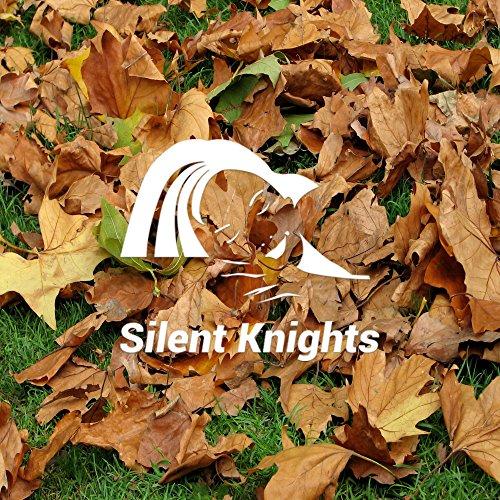 Sleepy Baby Sounds of Rustling Leaves