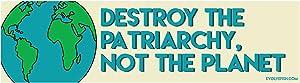 "EvolveFISH Destroy The Patriarchy Not The Planet Bumper Sticker - [11"" x 3""]"