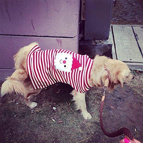 Cómo elegir el traje de Navidad adecuado para su perro