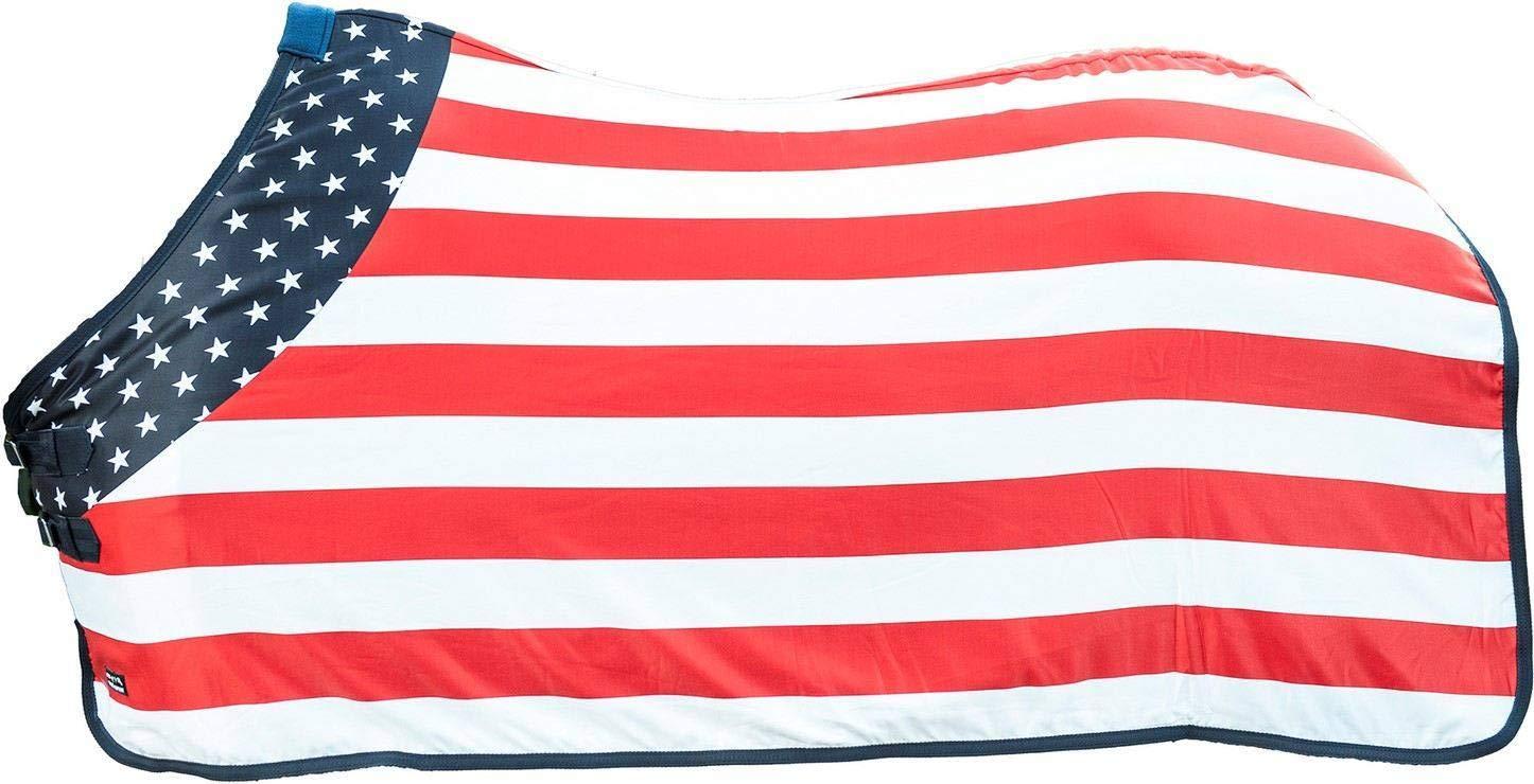 design semplice e generoso HKM – Soffitto Flags, Flag USA USA USA  confortevole