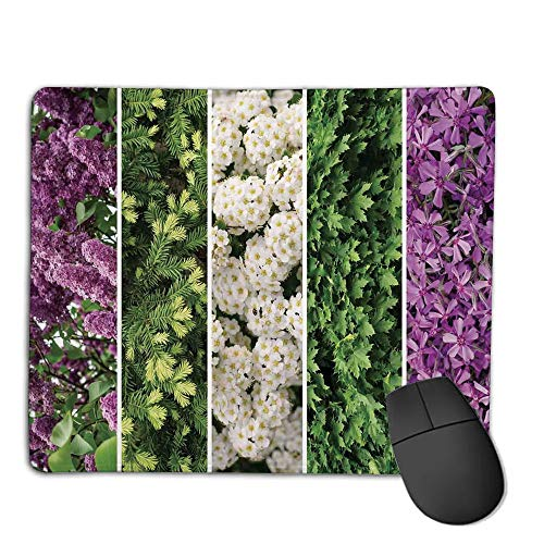 (Mouse Pad Custom,Mouse Pad Non-Slip Thick Rubber Large MousepadFlower,Collage Mix Diverse Herbs and Blossoming Bouquet Flowers Romantic Wedding Concept,Green Violet,Suitable for Any Mouse Type,)