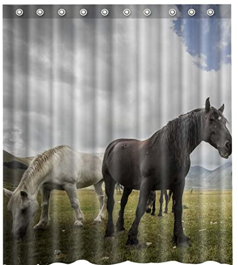Amazon Black Horse Shower Curtain12 Hooks Included 69x 84